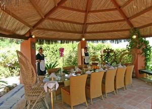 outdoor dining ужин на открытом воздухе